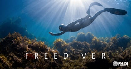 PADI Freediver und Basic Freediver 2
